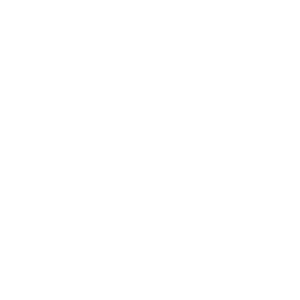 Icon Standabfallbehälter der Metallwerke Renner GmbH